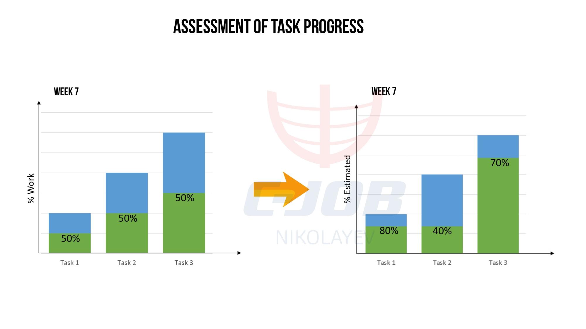 MS Project implementation at C-Job Nikolayev